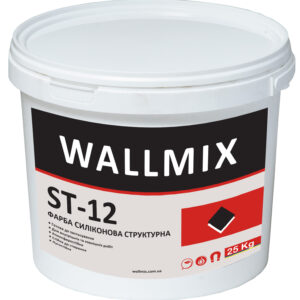 Silicone paint